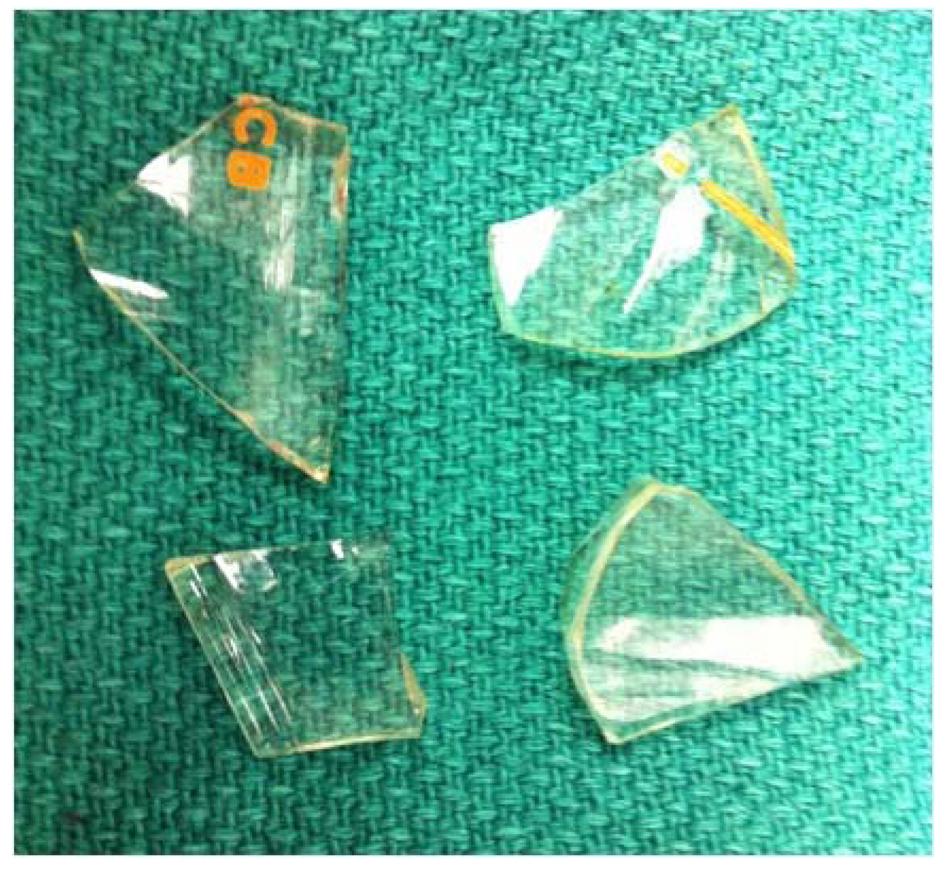 swallow-glass-shard